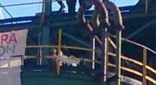 Narni, protesta choc degli operai della Carbon (Foto Papa)