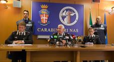 Uova contaminate in provincia di Viterbo. La conferenza stampa dei Nas (foto Davide Fracassi/Ag.Toiati)