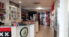 In vetrina i semi di cannabis: Lecce come Amsterdam