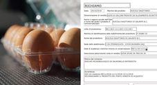 Uova contaminate dalla salmonella: i lotti ritirati dai supermercati