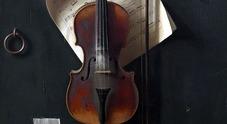 Distrutta la foresta degli abeti rossi che dà il legno per gli Stradivari