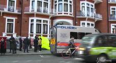Il video dell'arresto all'ambasciata dell'Ecuador