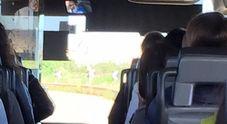 Sui social la rabbia dei pendolari: «Noi vittime del loro saccheggio»