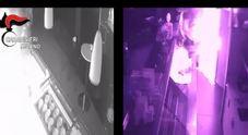 Legnano, incendio doloso in un bar: 5 arresti