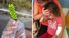 Roma, bimbe avvelenate dalle bacche all'asilo comunale: «Nessuno le ha tolte»