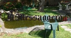 Bambino di 2 anni annega in uno stagno nel giardino di casa a Nettuno: era in casa con mamma e nonna