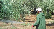 Pesticidi, pronti tre ricorsi si mobilitano anche i sindaci
