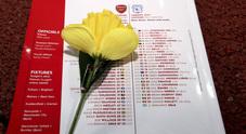 Rosa gialla sul nome del giocatore