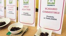 Insetti interi sulle tavole italiane dal primo gennaio: dalle tarantole del Laos ai vermi thailandesi