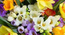 Festa della mamma, 2,5 milioni di fiori per le mamme italiane Auguri!