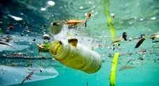 Plastica in spiaggia: divieti ignorati e zero controlli. I sindaci: «Poche risorse»