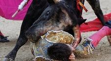 Torero gravissimo: incornato al collo da un toro infuriato