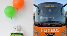 Flixbus, mamma partorisce sul bus. Il regalo dell'azienda per la bimba: «Viaggi gratis fino a 18 anni»