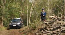 Sesso nel bosco con una ragazzina di 13 anni: arrestato sul Vesuvio, era già stato fermato per stalking