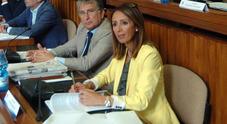 Dimissioni, giunta senza pace Stavolta lascia l'assessore Greco