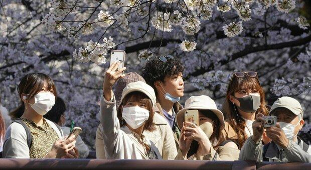 Variante giapponese, maggiore contagiosità e presunta resistenza al vaccino: cosa sappiamo