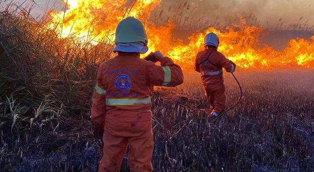 Incendio agli Alimini