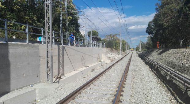 «Il rumore del cantiere disturba gli uccelli»: Puglia isolata, frena il progetto di raddoppio della ferrovia per l'Alta velocità