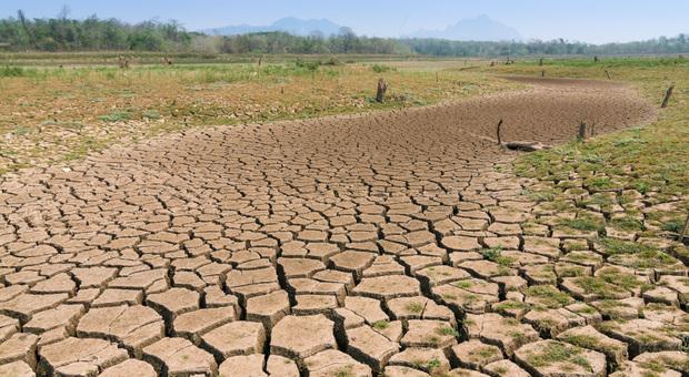 in sessant'anni, temperatura aumentata di 3,1 gradi. Allerta desertificazione