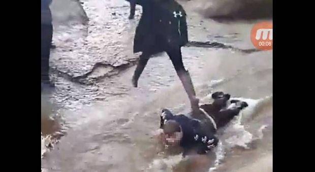 Alunno disabile umiliato e costretto dai compagni a fare da ponte umano nel ruscello