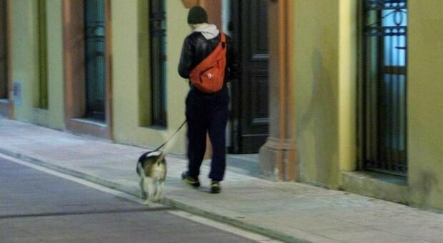 Lucca, lite nel bar per un cane bagnato: 35enne difende una donna e viene accoltellato, è fin di vita
