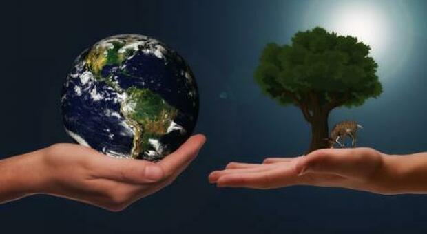 Persone, animali e ambiente. One Health: un patto di comunità il 14 ottobre a Palazzo Santa Chiara a Roma