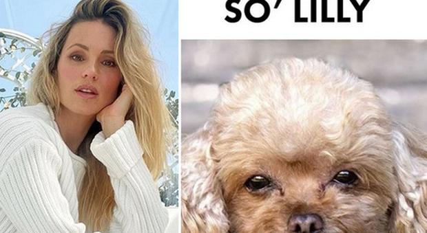 Michelle Hunziker e il suo cane, il barboncino Lilly (Instagram)