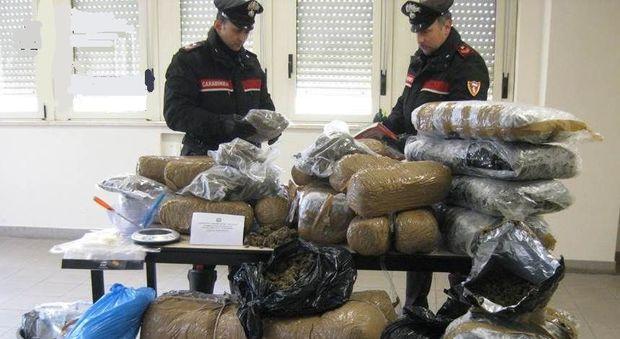 Nel garage e nel letto 170 chili di marijuana: cinque arresti