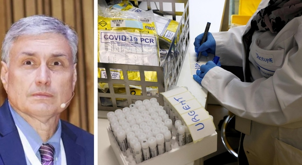 Covid, il virologo Silvestri: «Niente panico e niente lockdown, sta arrivando la cavalleria degli anticorpi»