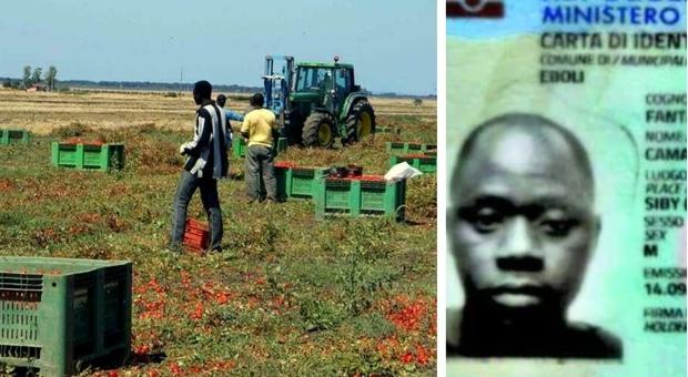 Bracciante morto per il caldo, la Puglia vieta il lavoro nei campi nelle ore torride