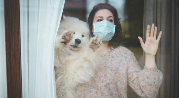 Coronavirus, l'Inps precisa: «La quarantena non sarà equiparata alla malattia»