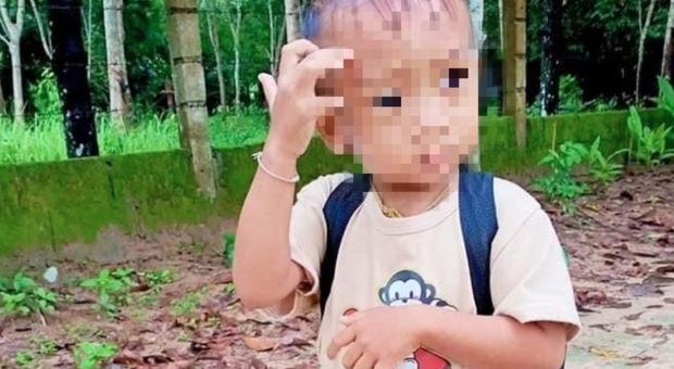 Bimbo di 2 anni dimenticato nello scuolabus per ore: il piccolo muore dopo 4 giorni in coma