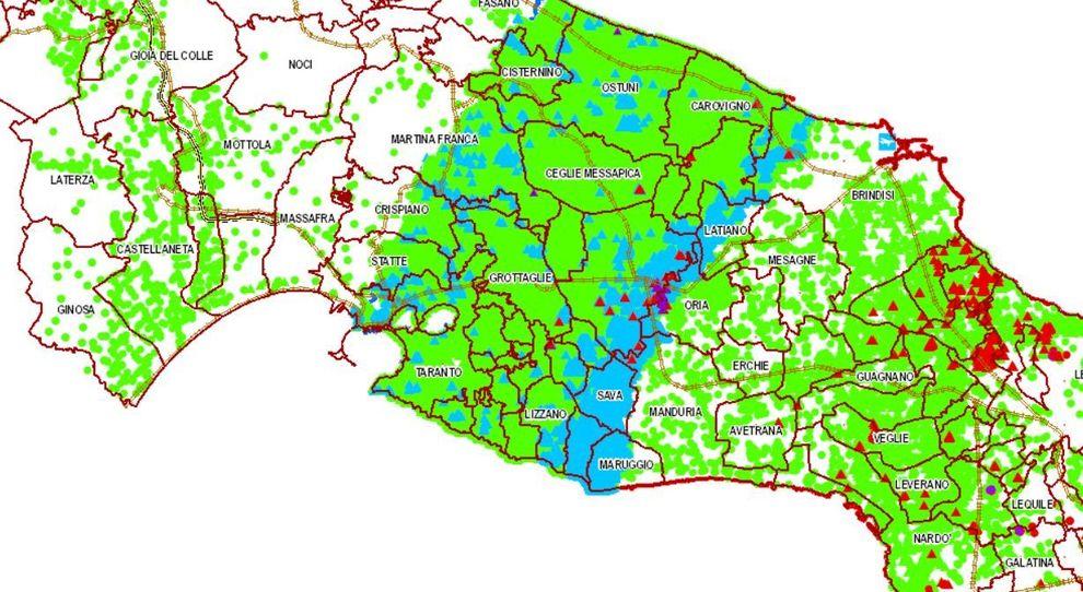 Mappa Xylella Puglia.Xylella Nuovo Allarme Rosso Spuntano Altri Quattro Focolai