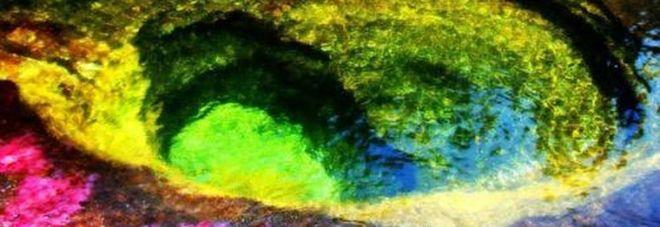 Sembra un quadro eppure è un fiume colombiano: la magia del Caño Cristales