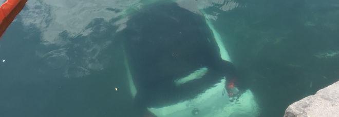 Dimentica il freno a mano: auto in mare a Torre del Greco