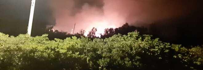 Incendio lungo la litoranea: in fumo oltre tre ettari di pineta