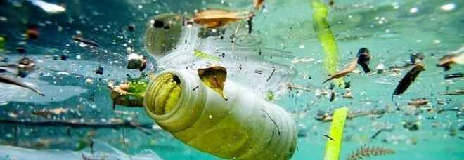 Il Tar boccia l'ordinanza che vieta la plastica nei lidi