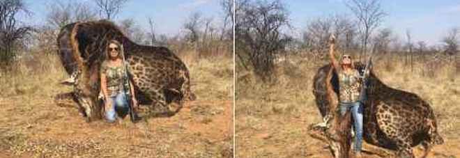 Cacciatrice americana uccide una giraffa nera e posta la foto: valanga di insulti sui social