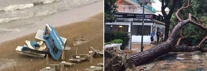 Venezia, violento temporale: alberi sradicati, danni e feriti