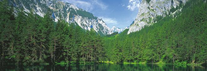 Grüner See  (Copyright-Österreich Werbung, Photographer-G. Popp)