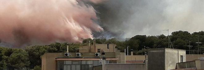 Inferno intorno all'ospedale di Gallipoli. Il sindaco denuncia: «Incendio doloso»