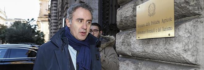 L'assessore Di Gioia si dimette e attacca: «Messo sullo sfondo da Emiliano»