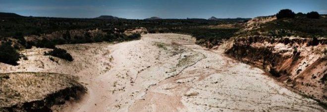 «Metà territorio della Puglia è a rischio desertificazione»