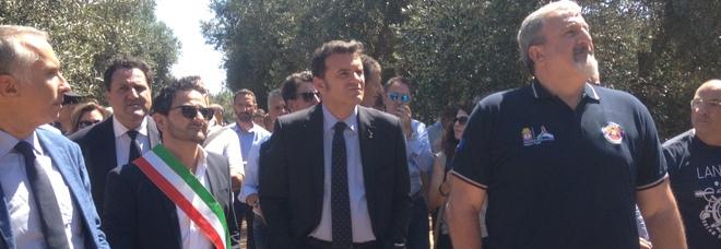 Il ministro Centinaio: «Basta con i ritardi sulla xylella. Non credo ai negazionisti, è ora di agire»