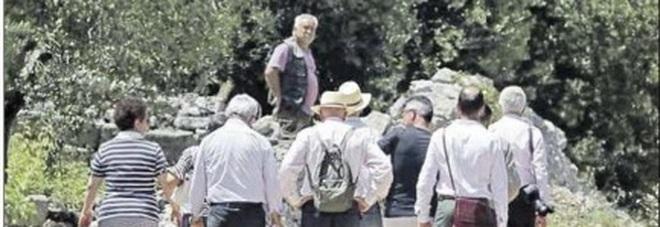 Misure anti-xylella: prime ispezioni Ue a Ostuni e Cisternino