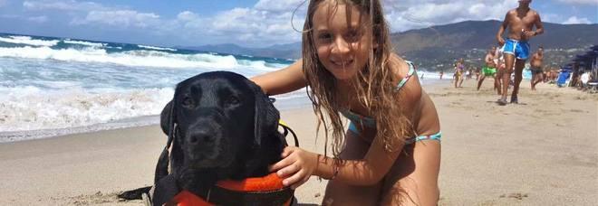 Tragedia sfiorata in mare, cane eroe salva bimba di 8 anni travolta da un'onda