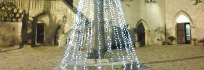 Alberi accesi in contemporanea In Valle d'Itria è gia Natale