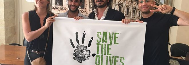 """Xylella, nasce """"save the Olives"""" il 21 luglio concerto a Tiggiano con i cameristi della Scala"""