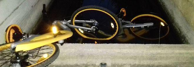 Rotte e buttate via come spazzatura. Ecco come i vandali trattano le oBike a Lecce Il Comune: «Vandalizzati 50 mezzi»