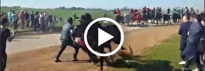 Cavallo travolge e uccide uno spettatore, choc alla «Cavalcata dei buoi» di Chieuti (Facebook)